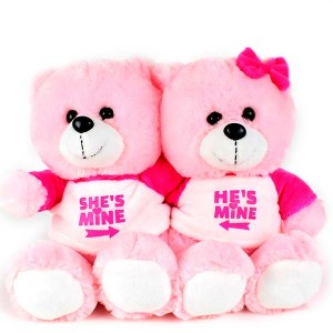 Hes Mine Shes Mine Teddy Pair Pink
