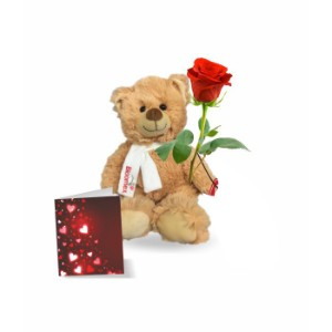 Teddy Rose And Card
